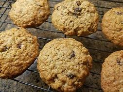 Gluten Free Oatmeal Raisin Cookies - One Dozen - Homemade